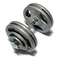 Домашняя наборная гантель FitLogic Hammer Finished Dumbbell 25,5 kg