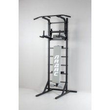 Комбинированная передвижная гимнастическая стенка Универсал /СТУП/ серый ТМ Ладас